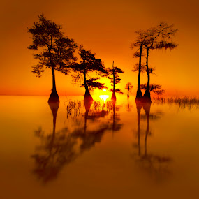 Sunrise in the Florida Everglades by Clane Gessel - Landscapes Waterscapes ( florida, everglades, landscape )