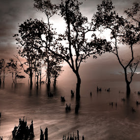 armature by Harry Aiee - Landscapes Waterscapes