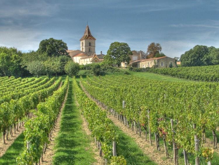 Bordeaux Wine Regions of France