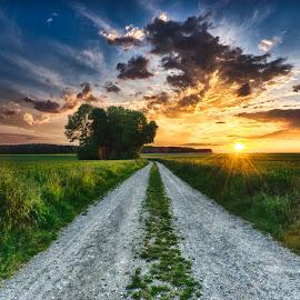 by Cristiano Bento - Landscapes Sunsets & Sunrises ( bavaria, sunsets, germany )