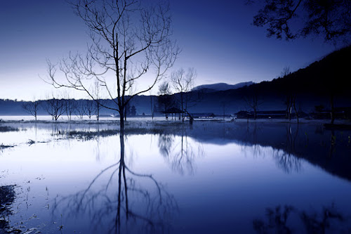 Tamblingan Lake by Hendri Suhandi - Landscapes Waterscapes