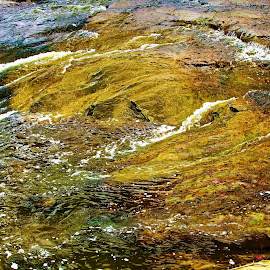 Stream of Color by Paul S. DeGarmo - Nature Up Close Water ( look, water, stream, shallow, color )