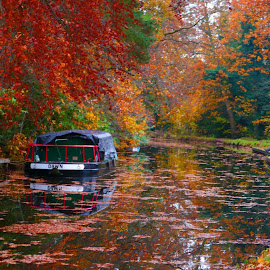 Autumn on the Basingstoke Canal by Dave Williams - Landscapes Waterscapes ( fleet, barge, autumn, fall, reflections, trees, fishing, leaves, basingstoke, canal )