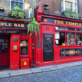 Famous Watering Hole by Robert Coffey - Buildings & Architecture Public & Historical ( red, ireland, window, dublin, street, door, bar, pub )