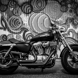 by Derek Martin - Transportation Motorcycles ( harley davidson, b&w, motorbike, graffiti, motorcycle, black, custom )
