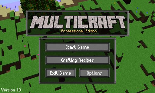 Multicraft: Pro Edition screenshot 1