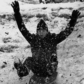 Sledding at peace. by Alex Nicholson - Sports & Fitness Snow Sports ( hwcwintersports )