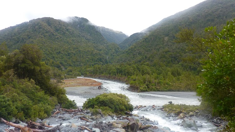 Cropp River, New Zealand (453.39 inches of rainfall)