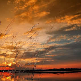 SUn by Wira Agt - Landscapes Sunsets & Sunrises ( di, gi, tra, la, he )