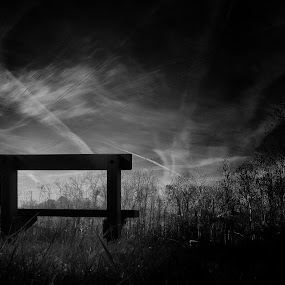 Comfort in Solitude by Christopher Gray - Instagram & Mobile iPhone ( mono-tone, b&w, bench, black and white, b and w, landscape, monotone )