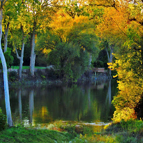 Autumn Is For Lovers by Howard Sharper - City,  Street & Park  City Parks ( golden hour, reflections, sunset, riverside, autumn, landscape,  )
