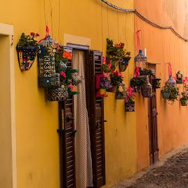 Alghero by Andrew Moore - City,  Street & Park  Street Scenes