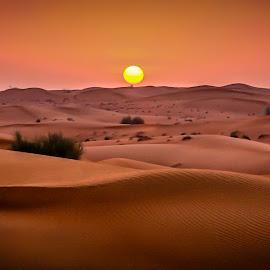 by Didier Tartare - Landscapes Sunsets & Sunrises ( sand, dunes, desert )