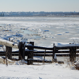Salisbury Beach Reservation in Winter by Kristine Nicholas - Novices Only Landscapes ( old, icy, wood, waterscape, marsh, ocean, fences, beach, landscape, fencing, cold, wetland, ice, snow, bush, water, estuary, riverway, sea, snowy, seascape, gate, fence, winter, wooden, bushes, wetlands, reservation, brush, blockade, waterway, river )