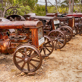 old tractors by Cora Lea - Transportation Other
