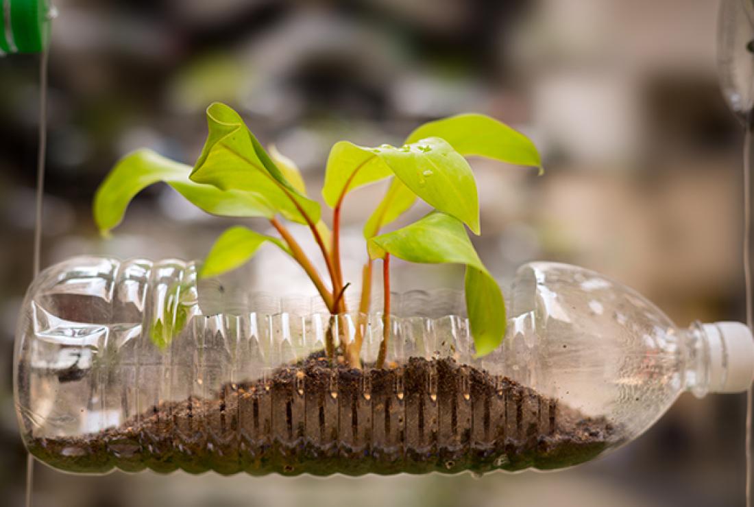 6 Iniciativas que vão inspirá-lo a reciclar