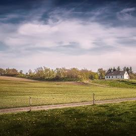 Spring in Hjortdal by Ole Steffensen - Landscapes Prairies, Meadows & Fields ( slettestrand, road, denmark, spring, hjortdal, fields )
