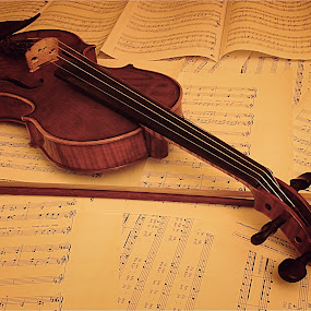 Violin by Richard Timothy Pyo - Artistic Objects Musical Instruments ( music, string instrument, musical notes, violin, string, note, object, musical, instrument )