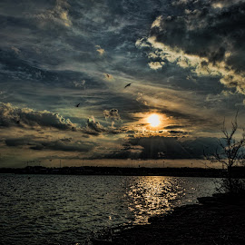 Old hickory Lake by Angela Everett - Landscapes Sunsets & Sunrises ( clouds, old hickory lake, sunset, tennessee, lake, birds,  )