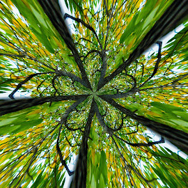 Forest Trickery  by Patricia  Yocum - Digital Art Abstract