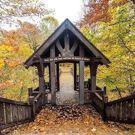 Entrance to the Seven Bridges Trail by Jason Lockhart - Buildings & Architecture Bridges & Suspended Structures ( milwaukee, wisconsin, fall colors, bridge, grant park, seven bridges trail )