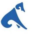hadoop training online in meerut