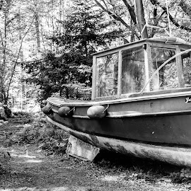 Final resting place by Ashley Cordwell - City,  Street & Park  City Parks ( abstract, old, detail, beached, wood, hdr, black and white, absurd, forest, boat, tree, forest floor, unusual )