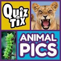 QuizTix: Animal Pics Quiz For PC (Windows And Mac)