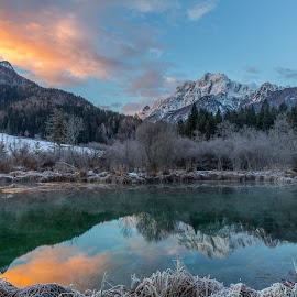 Zelenci by Bogy Urevc - Landscapes Mountains & Hills
