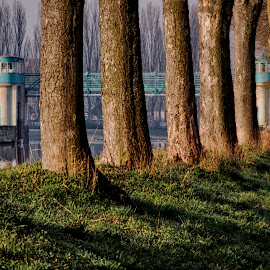 by Michal Fokt - City,  Street & Park  Neighborhoods