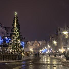 Gdansk Xmas by Adam Lang - Public Holidays Christmas ( lights, gdansk, winter, christmas, christmas tree, poland )