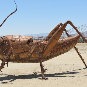 Metal Grasshopper.JPG