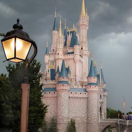 Disney World Magic by DB Channer - City,  Street & Park  Amusement Parks