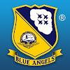Blue Angels - Aerobatic SIM
