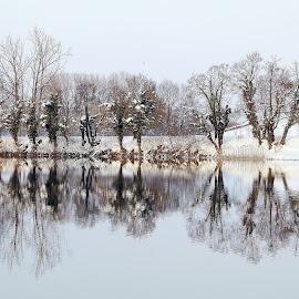 River Korana   Karlovac-Croatia  by Zvonimir Đarmati - Landscapes Weather