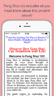 Feng Shui 101 - screenshot