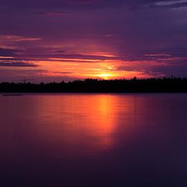 sunset  by Jessica Horn - Landscapes Sunsets & Sunrises ( water, nature, purple, sunset, lake, scruffybread, sunrise, landscape, sun,  )