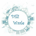 DilMeDilli profile pic