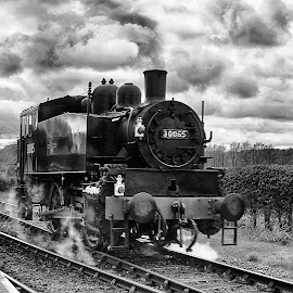Back To Front by Dave Godden - Transportation Trains ( railway, black and white, station, 30065, engine, sussex, kent, locomotive, train, bodiam, east, black, steam )