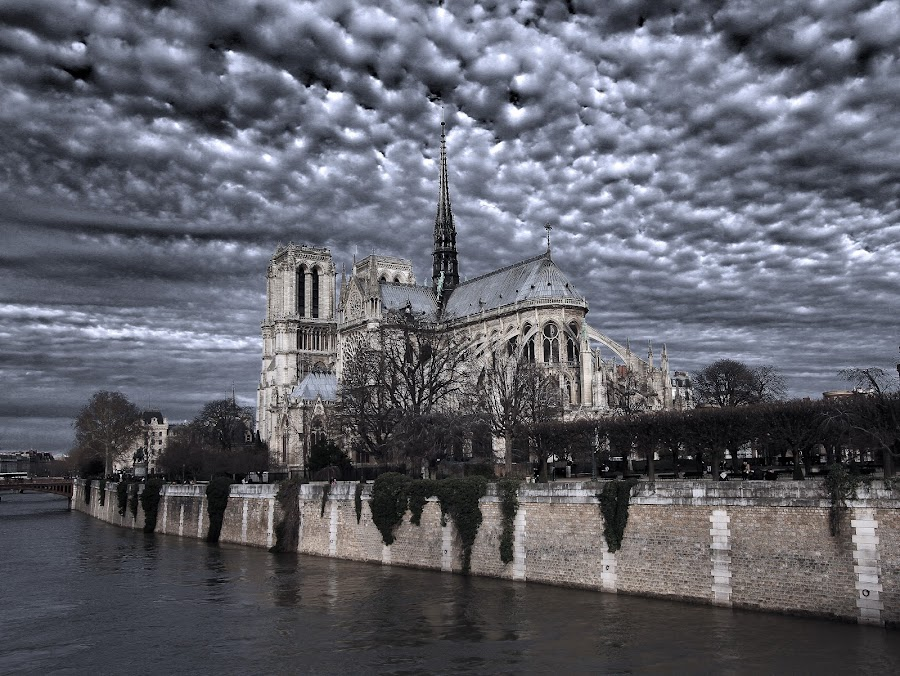 notre dame de paris on river seine by Almas Bavcic - Buildings & Architecture Other Exteriors
