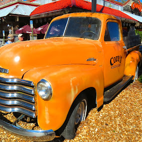 Antique Chevrolet Truck by Rita Goebert - Transportation Automobiles ( antiques; cars and trucks; cody's restaurants; florida; rustic decor; chevrolet; collections; license plates; beer cans; signs; memorabilia;,  )