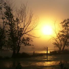 by Sandy Fetter - Landscapes Sunsets & Sunrises