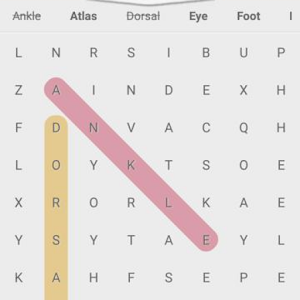 Download medical word search for Windows Phone