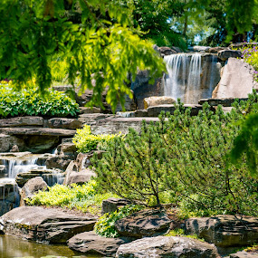 FMG Waterfall by Andrew Christmann - Landscapes Waterscapes ( water, park, green, waterfall, frederik meijer gardens 2017 )