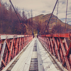 Old Skippers Canyon Bridge Road by Karissa Best - Transportation Roads ( otago, best, karissa, canyon, bridge, skippers, photography )