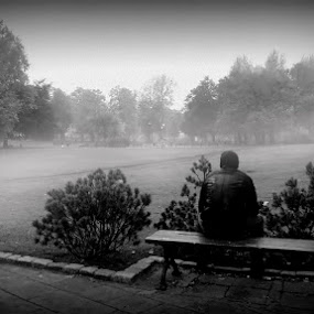 Alone by Marta Bednarska - People Portraits of Men ( fog park )