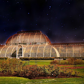 Kew Gardens Greenhouse by Stephen Avery  - Buildings & Architecture Public & Historical ( london, greenhouse, summer, kew, garden )
