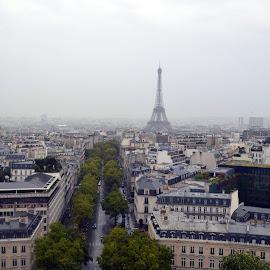Paris by Ricardo Fong - City,  Street & Park  Vistas ( eiffel tower, paris, arch du triumph, eiffel, view, city,  )
