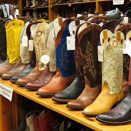 Western Boots by Rita Goebert - Artistic Objects Clothing & Accessories ( wall drug store, wall; south dakota; drug stores; clothing; boots; hats; western wear; restaurant )
