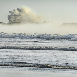 Big One by Alan Rouse - Landscapes Beaches ( huge wave, cold, sea mist, waves, beach )